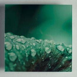 Cuadro-Acrilico-Gotas-Verde-25x25
