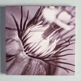 Cuadro-Canvas-Flor-Gris-25x25cm