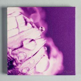 Cuadro-Canvas-Flor-Violeta-25x25cm