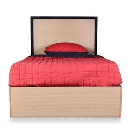cama-tx-2