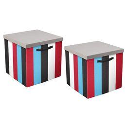 Set-de-2-Cajas-Knight-Rayas