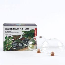 Recipiente-de-cristal-para-plantas-2pzas