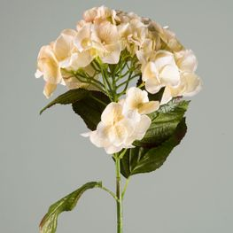 Hortensia-Blanca-80-cm