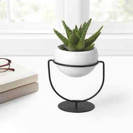 1009251-748_UMBRA_NESTA_WALL_AND_DESK_PLANTER_WHITE_SPECKLE_INSITU_01