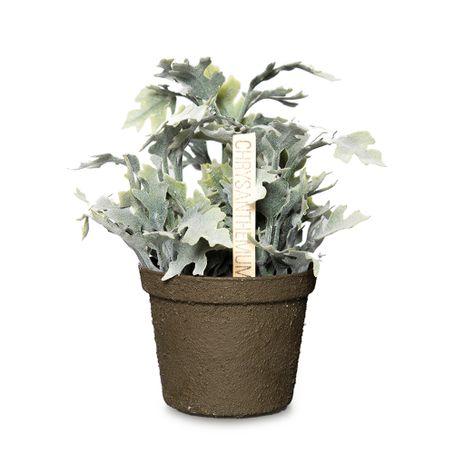 Crisantemo-h15cm