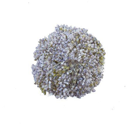 allium-ball-azul