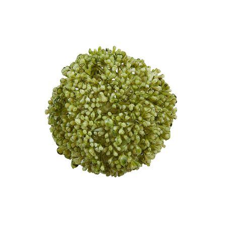 allium-ball-verde