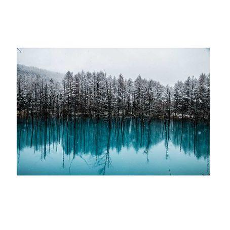 cuadro-Biei-Blue-Pond