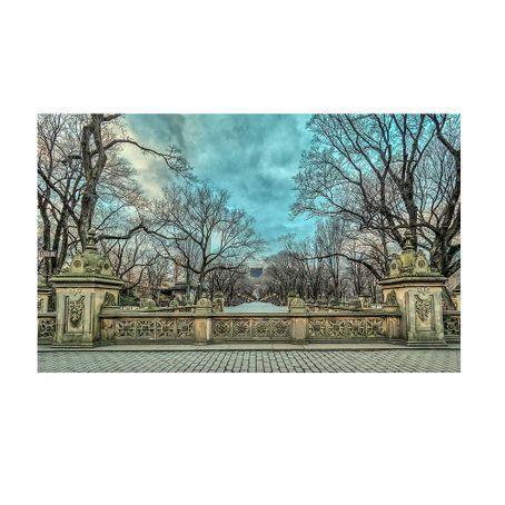 Central-Park-Mall