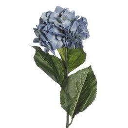 Hortencia-Chia-Azul-MO25659